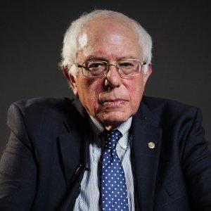 Sanders Blackout img01