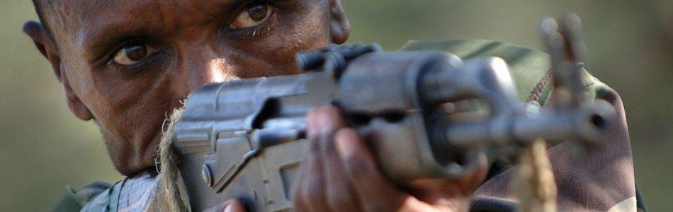 Ethiopian Defense Force