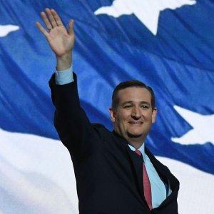 Listen Ted! img01